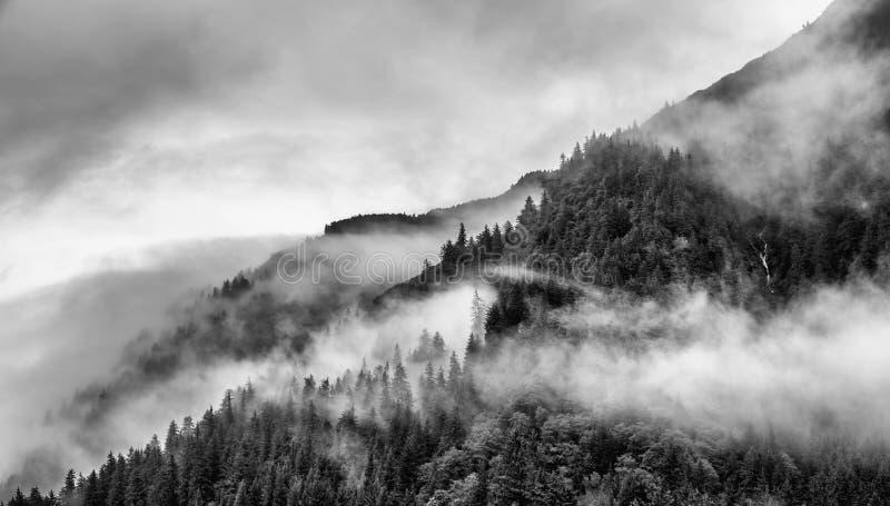 Ομίχλη που καλύπτει τα δάση βουνών με το χαμηλό σύννεφο σε Juneau Αλάσκα για το τοπίο ομίχλης στοκ εικόνες