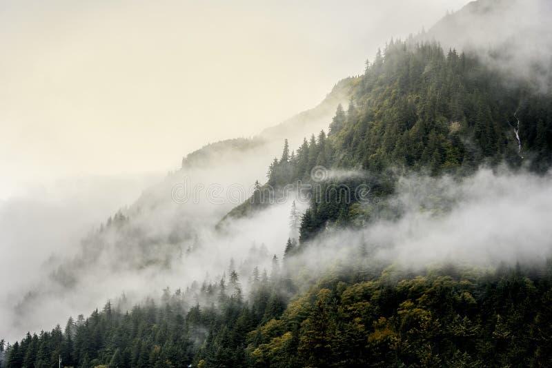 Ομίχλη που καλύπτει τα δάση βουνών με το χαμηλό σύννεφο σε Juneau Αλάσκα για το τοπίο ομίχλης στοκ φωτογραφίες