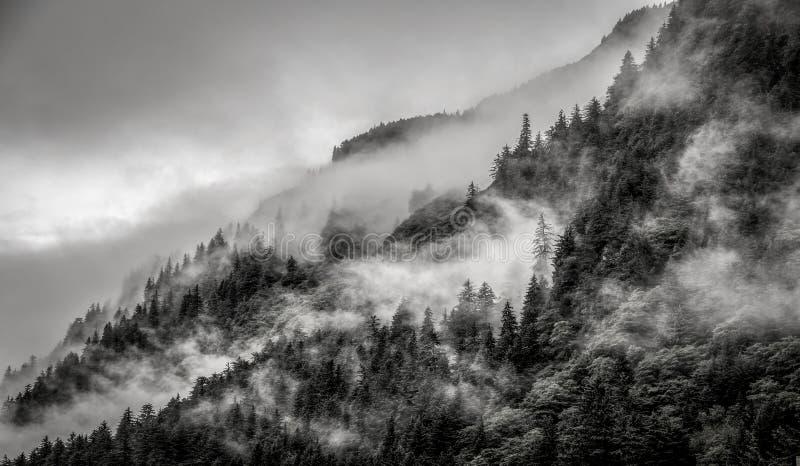 Ομίχλη που καλύπτει τα δάση βουνών με το χαμηλό σύννεφο σε Juneau Αλάσκα για το τοπίο ομίχλης στοκ εικόνες με δικαίωμα ελεύθερης χρήσης