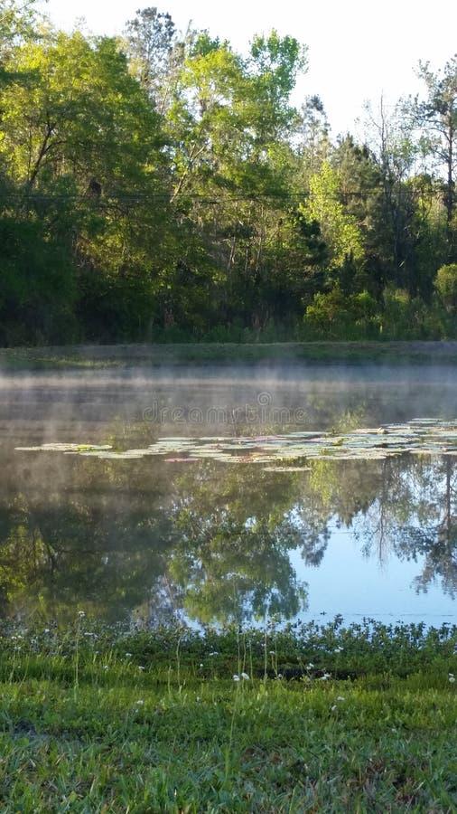 Ομίχλη πρωινού που ανυψώνει πέρα από τη λίμνη στοκ φωτογραφία με δικαίωμα ελεύθερης χρήσης