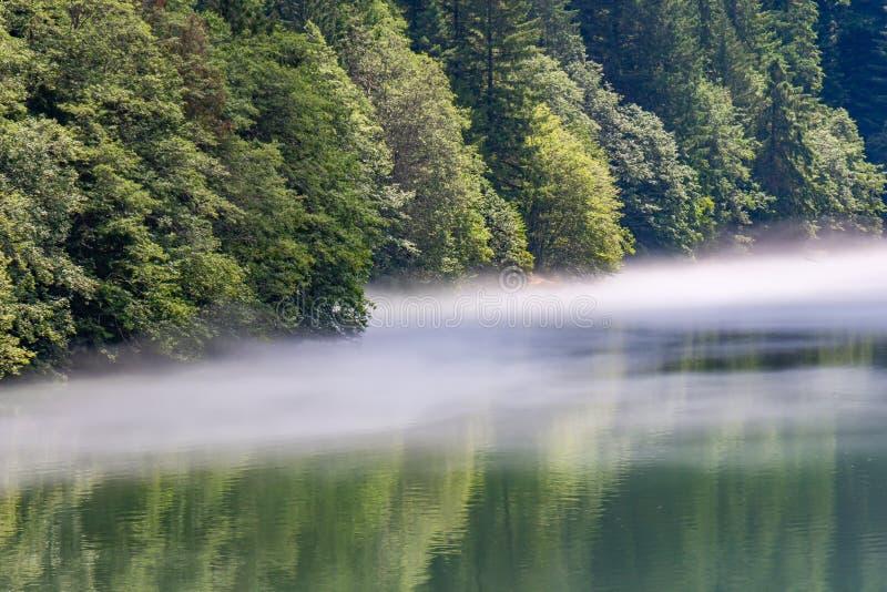 Ομίχλη στην ακτή της λίμνης Diablo, Ουάσιγκτον στοκ φωτογραφία