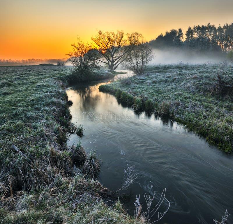 Ομίχλη στην κοιλάδα του ποταμού γραφική παράσταση πρωί στοκ εικόνα με δικαίωμα ελεύθερης χρήσης