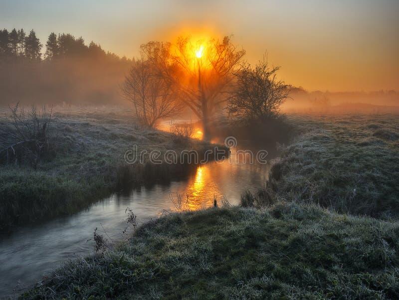 Ομίχλη στην κοιλάδα του ποταμού γραφική παράσταση πρωί στοκ φωτογραφία με δικαίωμα ελεύθερης χρήσης