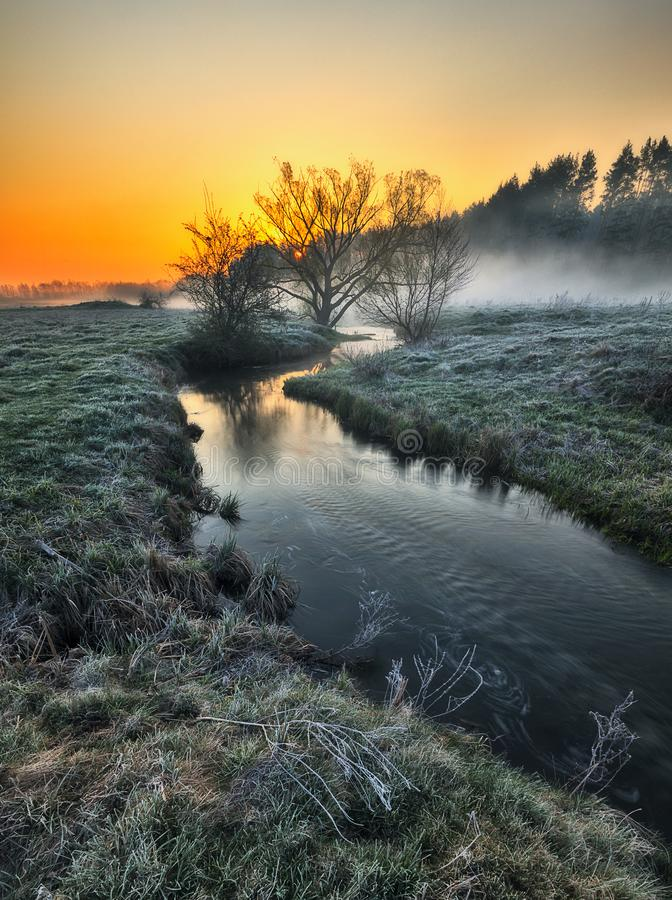 Ομίχλη στην κοιλάδα του ποταμού γραφική παράσταση πρωί στοκ φωτογραφίες με δικαίωμα ελεύθερης χρήσης