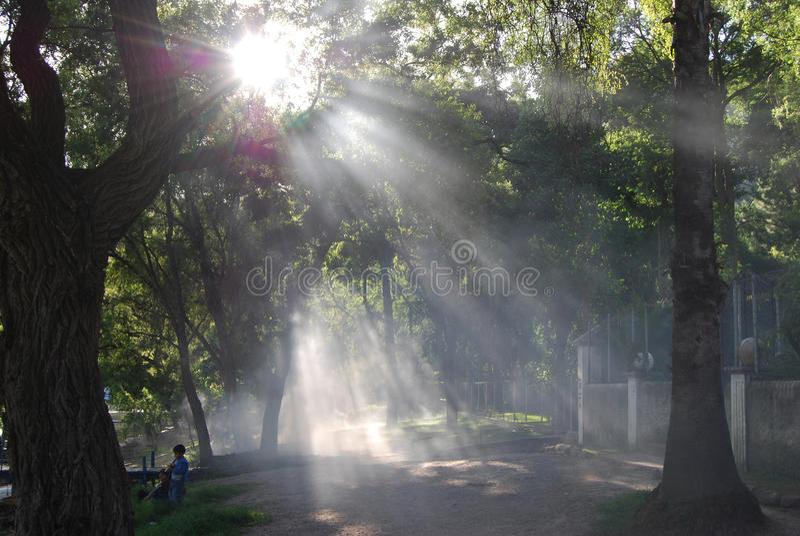 Ομίχλη από τη λίμνη atitlan στοκ φωτογραφίες με δικαίωμα ελεύθερης χρήσης