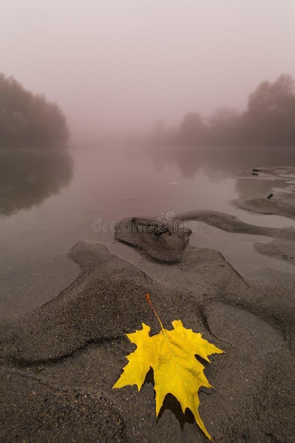Download Ομίχλη και υδρονέφωση σε έναν άγριο ποταμό Στοκ Εικόνα - εικόνα από πάρκο, κόκκινος: 62715161