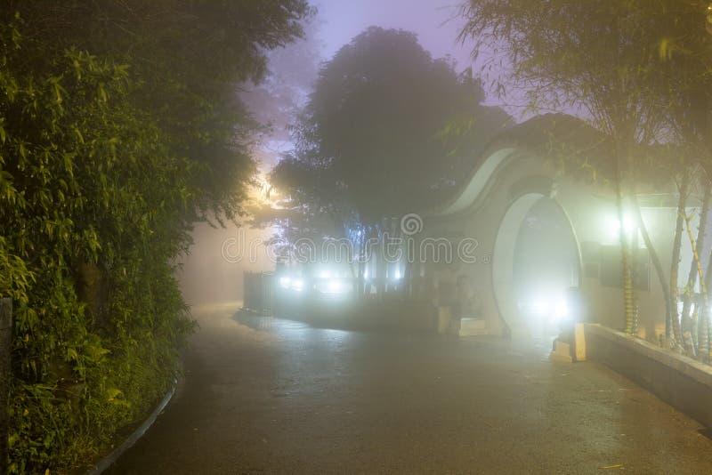 Ομίχλη μυστηρίου στο ασιατικό πάρκο, Χονγκ Κονγκ στοκ φωτογραφίες