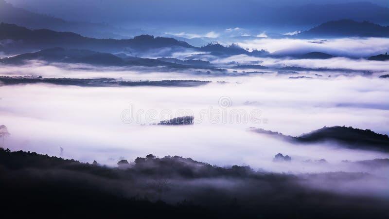 Ομίχλη που καλύπτει τα δάση βουνών στοκ φωτογραφία με δικαίωμα ελεύθερης χρήσης