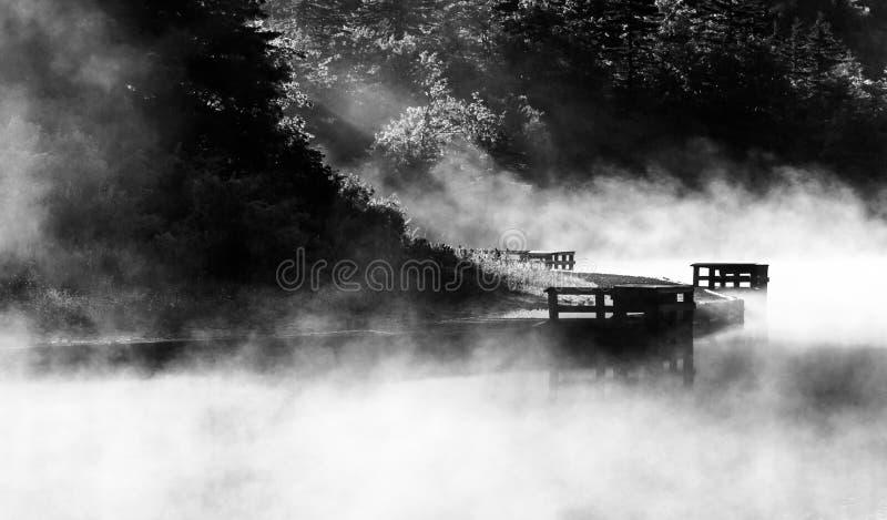 Ομίχλη πρωινού στην κομψή λίμνη εξογκωμάτων, εθνικό δρυμός Monongahela, WV στοκ εικόνες