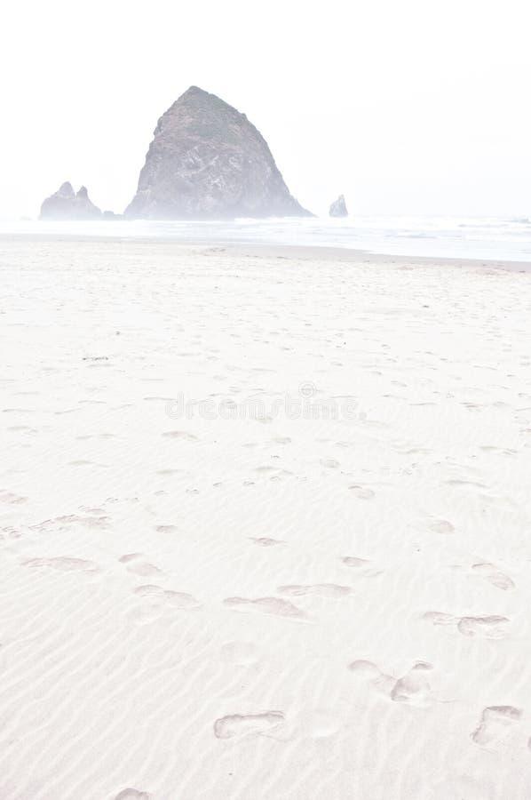 Ομίχλη πρωινού στην παραλία Rockaway, Όρεγκον στοκ φωτογραφία με δικαίωμα ελεύθερης χρήσης