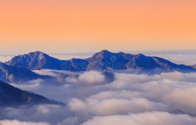 Ομίχλη στο πρωί στοκ εικόνες με δικαίωμα ελεύθερης χρήσης
