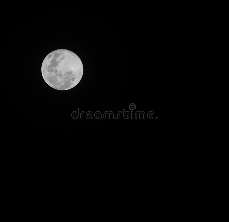 Ομιλία στο φεγγάρι του Μαρτίου στοκ φωτογραφία