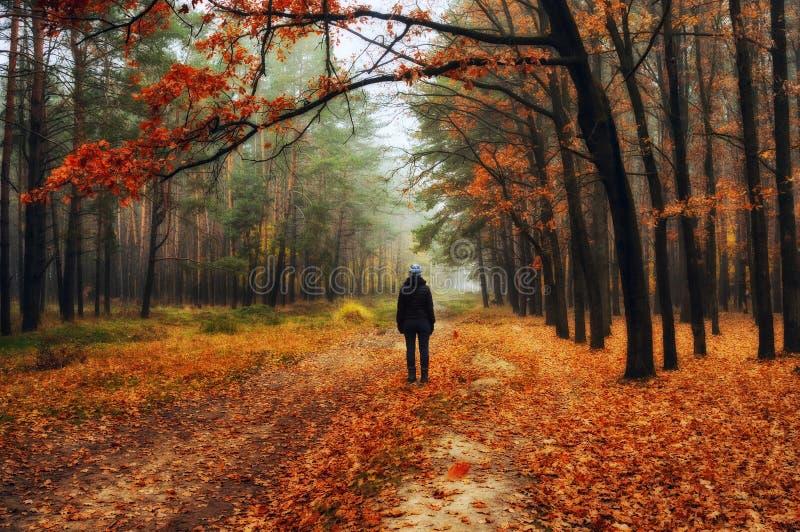 Ομιχλώδες δασικό κορίτσι στο δάσος φθινοπώρου στοκ εικόνες