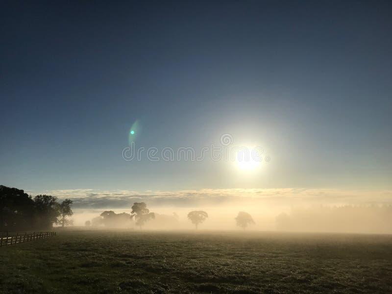 Ομιχλώδες ηλιοβασίλεμα - ομιχλώδεις τομείς στοκ φωτογραφία με δικαίωμα ελεύθερης χρήσης