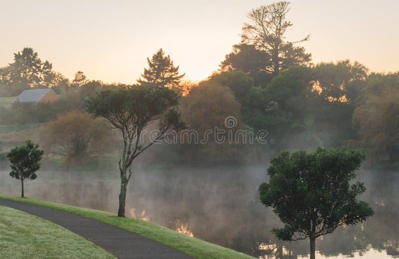 Ομιχλώδες πρωί στη Νέα Ζηλανδία στοκ εικόνες με δικαίωμα ελεύθερης χρήσης
