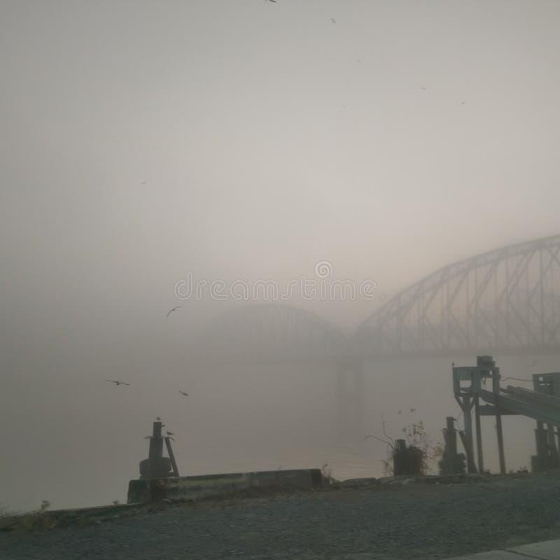 Ομιχλώδες πρωί της Λουιζιάνας στοκ φωτογραφία
