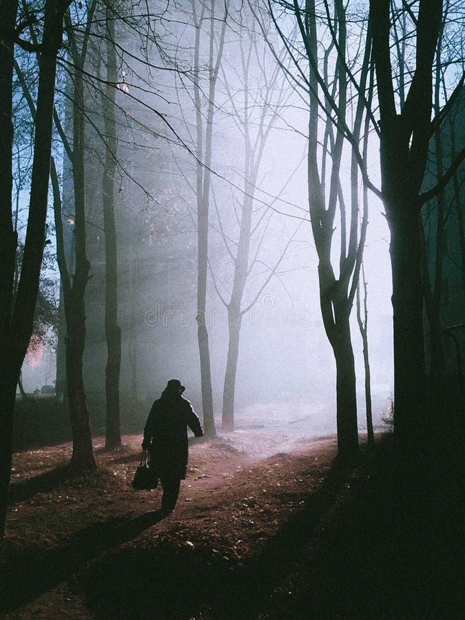 ομιχλώδες πρωί φθινοπώρου στοκ εικόνα