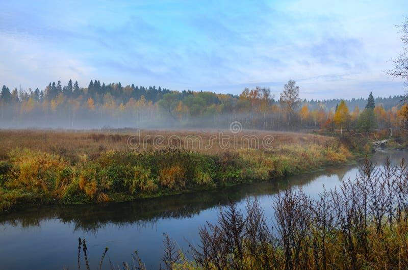 Ομιχλώδες τοπίο φθινοπώρου με το μικρό δασικό ποταμό στοκ φωτογραφίες