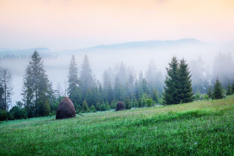 Ομιχλώδης άποψη πρωινού στην κοιλάδα βουνών Θαυμάσια θερινή ανατολή στα Καρπάθια βουνά, του χωριού θέση Pylylets, Transc στοκ φωτογραφία με δικαίωμα ελεύθερης χρήσης