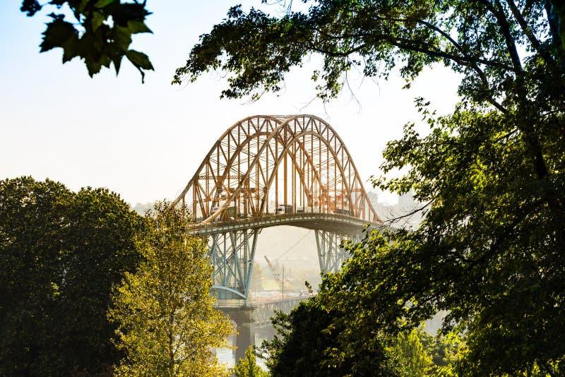 Ομιχλώδης γέφυρα Pattullo στοκ φωτογραφία