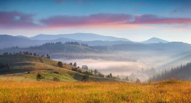 Ομιχλώδης θερινή ανατολή στα Καρπάθια βουνά στοκ εικόνα με δικαίωμα ελεύθερης χρήσης
