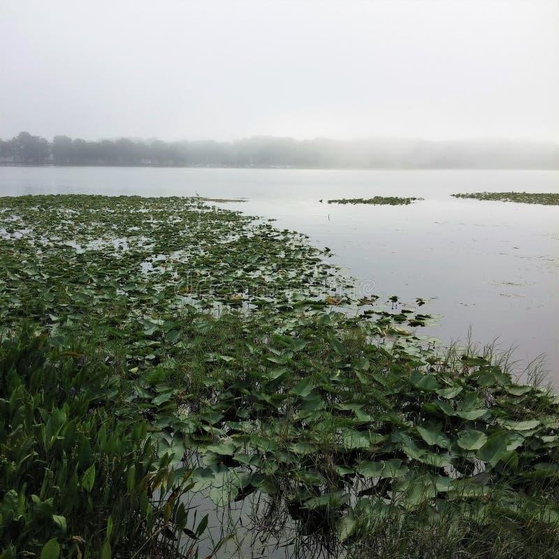 Ομιχλώδης λίμνη Harris στοκ φωτογραφία με δικαίωμα ελεύθερης χρήσης