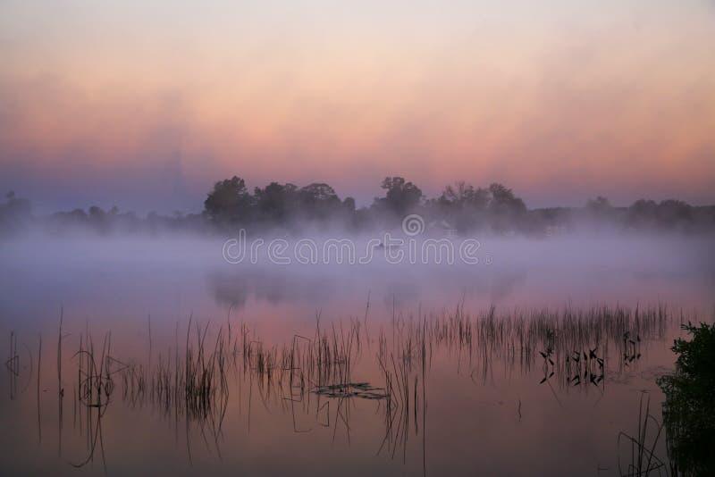 Ομιχλώδης ψαράς πρωινού φθινοπώρου στοκ φωτογραφίες
