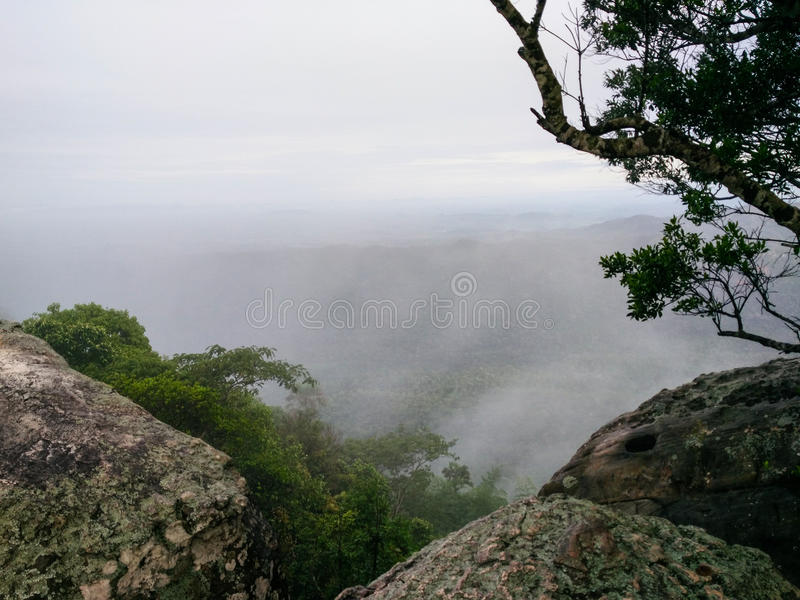 Ομιχλώδης κοιλάδα με τα δέντρα, τους βράχους και το misty υπόβαθρο ουρανού στοκ φωτογραφία με δικαίωμα ελεύθερης χρήσης