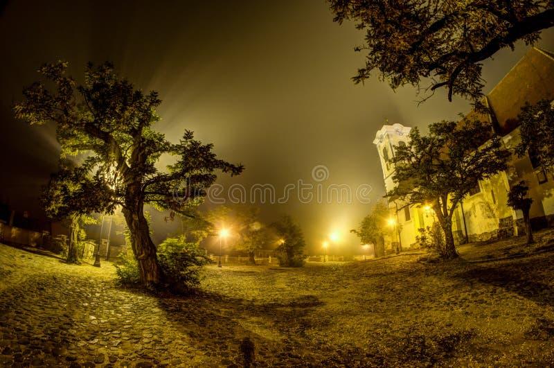 ομιχλώδης νύχτα στοκ εικόνες
