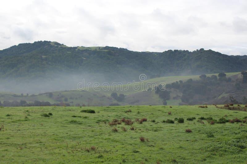 ομιχλώδης λόφος στοκ φωτογραφία με δικαίωμα ελεύθερης χρήσης