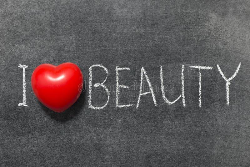 Ομορφιά αγάπης στοκ εικόνες με δικαίωμα ελεύθερης χρήσης