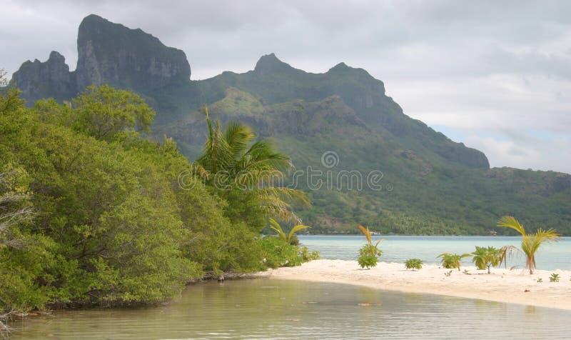 ομορφιά Ταϊτή στοκ εικόνες
