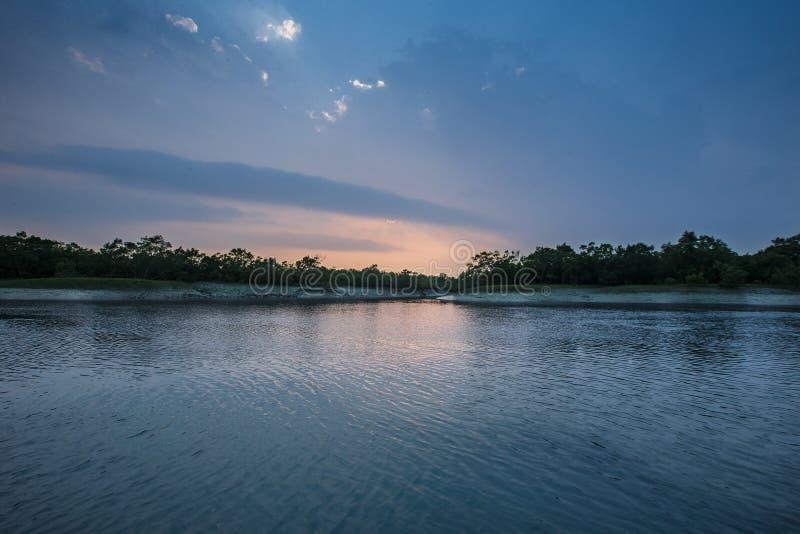 Ομορφιά των μαγγροβίων Sundarbans στην Ινδία στοκ φωτογραφίες με δικαίωμα ελεύθερης χρήσης
