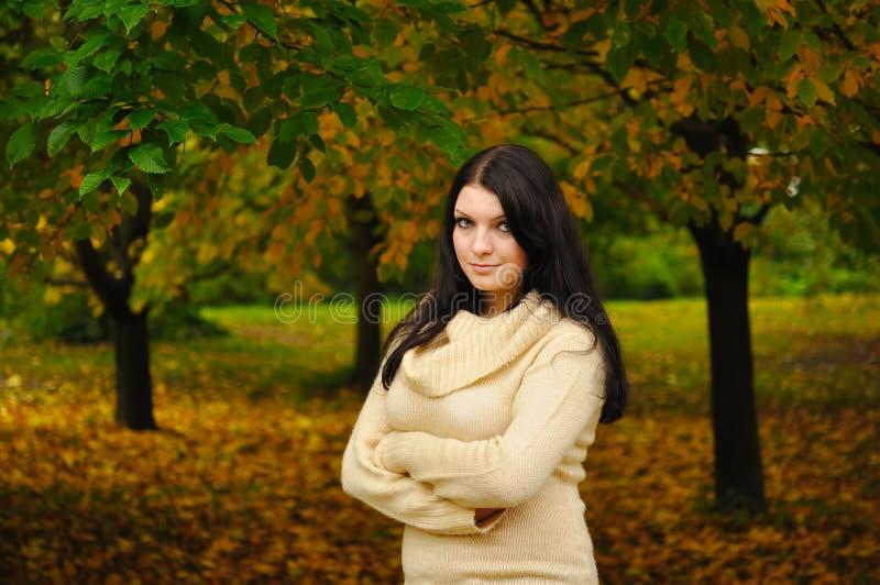 Download ομορφιά φθινοπώρου στοκ εικόνα. εικόνα από ματιά, φιλικός - 17057909
