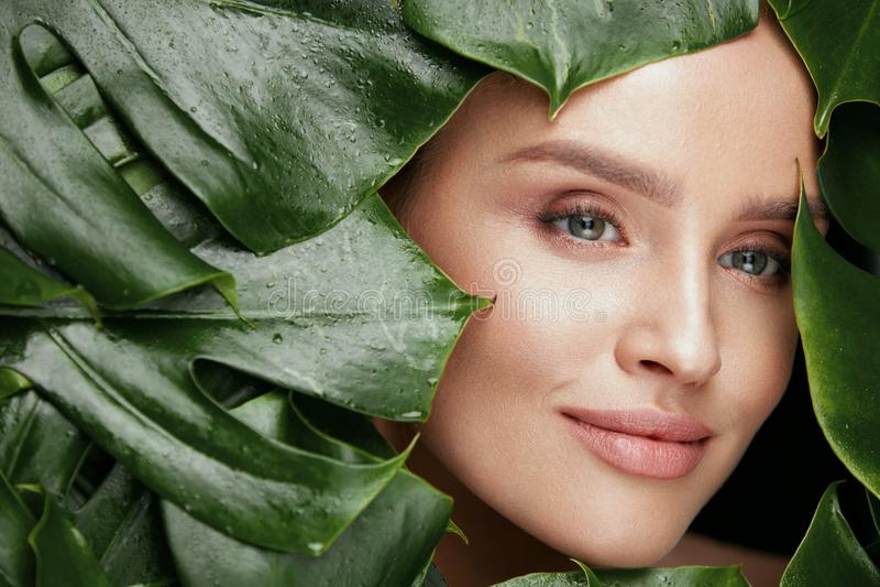 ομορφιά φυσική Όμορφο πρόσωπο γυναικών στα πράσινα φύλλα στοκ εικόνες