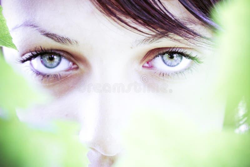 ομορφιά φυσική στοκ εικόνα με δικαίωμα ελεύθερης χρήσης