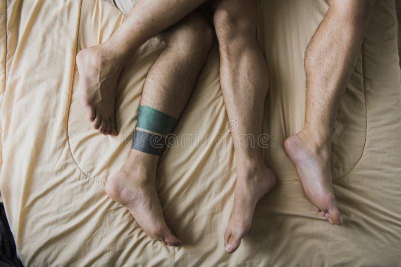 Ομοφυλοφιλική εγχώρια έννοια αγάπης ζεύγους στοκ εικόνες