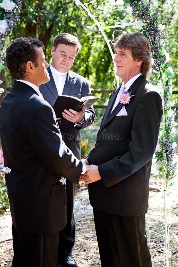 Ομοφυλοφιλικός γάμος στο πάρκο στοκ εικόνες