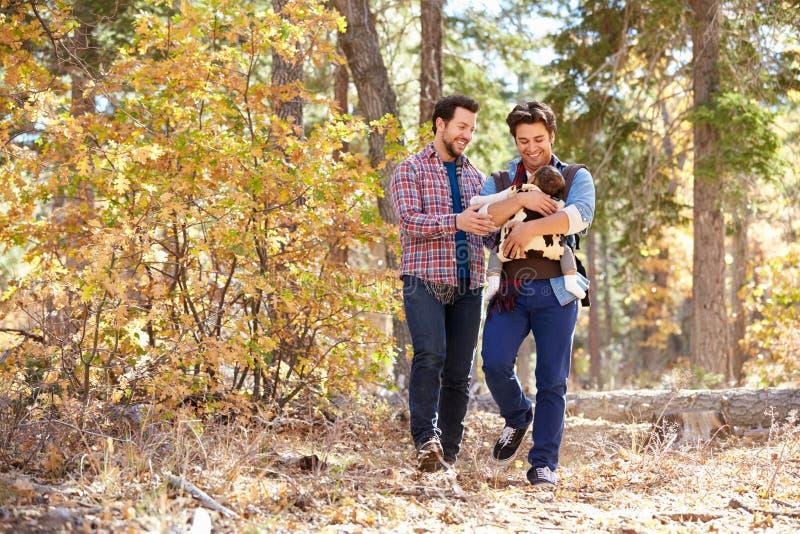 Ομοφυλοφιλικό αρσενικό ζεύγος με το περπάτημα μωρών μέσω της δασώδους περιοχής πτώσης στοκ εικόνα