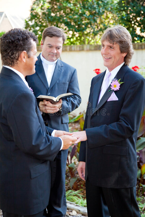 Ομοφυλοφιλικό ζευγάρι παντρεμένο επιτέλους στοκ εικόνα