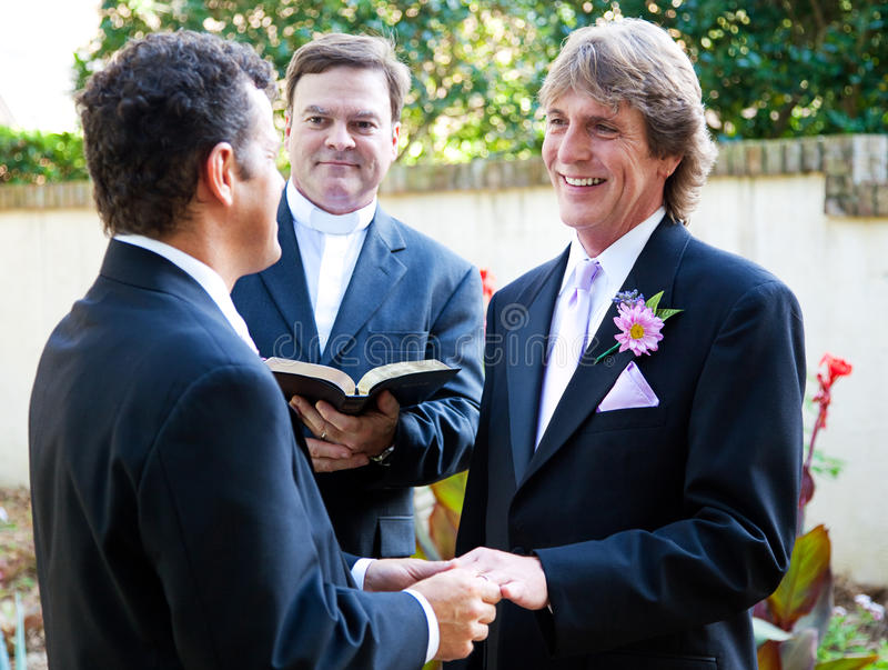 Το ομοφυλοφιλικό ζεύγος ανταλλάσσει τους γαμήλιους όρκους στοκ φωτογραφίες με δικαίωμα ελεύθερης χρήσης