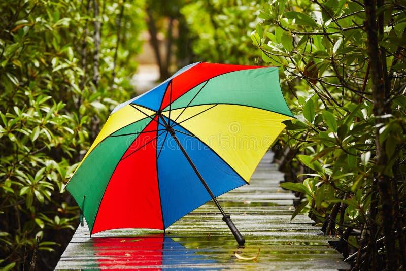 Ομπρέλα στη βροχή στοκ εικόνες με δικαίωμα ελεύθερης χρήσης