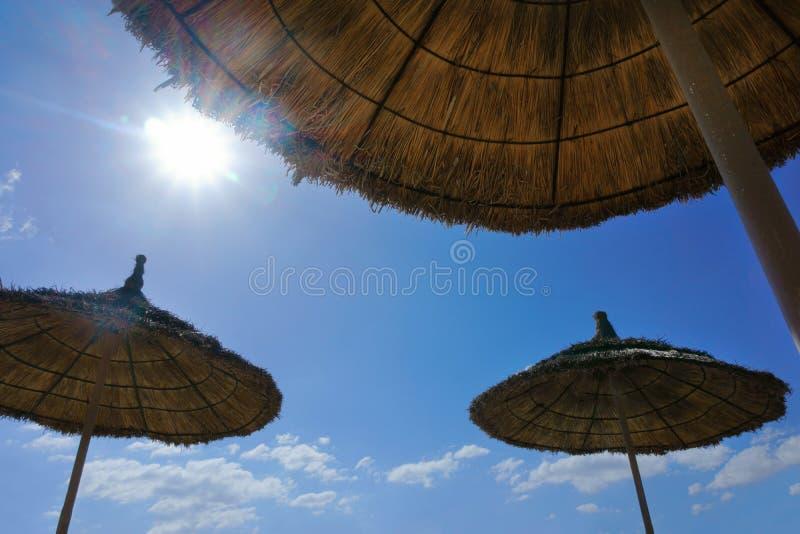 Ομπρέλες θαλάσσης στην παραλία στοκ φωτογραφίες με δικαίωμα ελεύθερης χρήσης