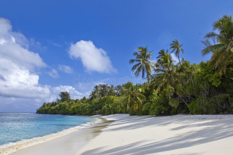 Ονειρεμένος παραλία στοκ φωτογραφία με δικαίωμα ελεύθερης χρήσης