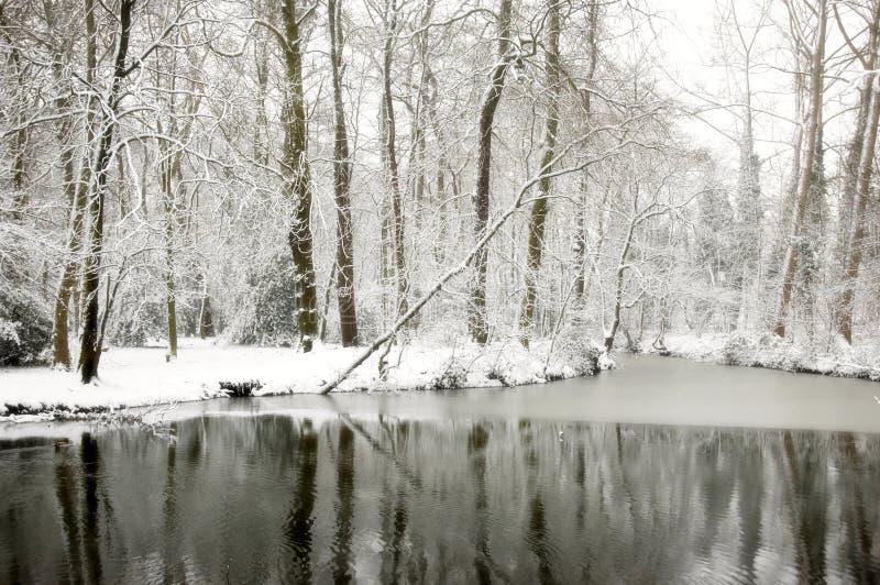 ονειροπόλο snowscape στοκ φωτογραφίες με δικαίωμα ελεύθερης χρήσης
