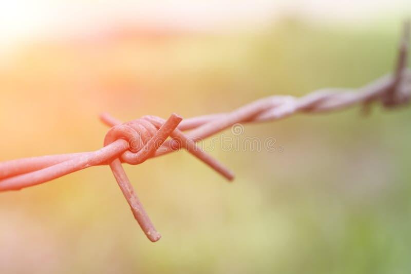 Οξυδωμένος barbwire στενός επάνω στοκ φωτογραφία με δικαίωμα ελεύθερης χρήσης