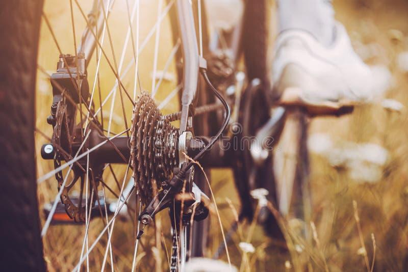 Οπίσθια κασέτα ποδηλάτων αγώνα στη ρόδα με την αλυσίδα στοκ φωτογραφία με δικαίωμα ελεύθερης χρήσης