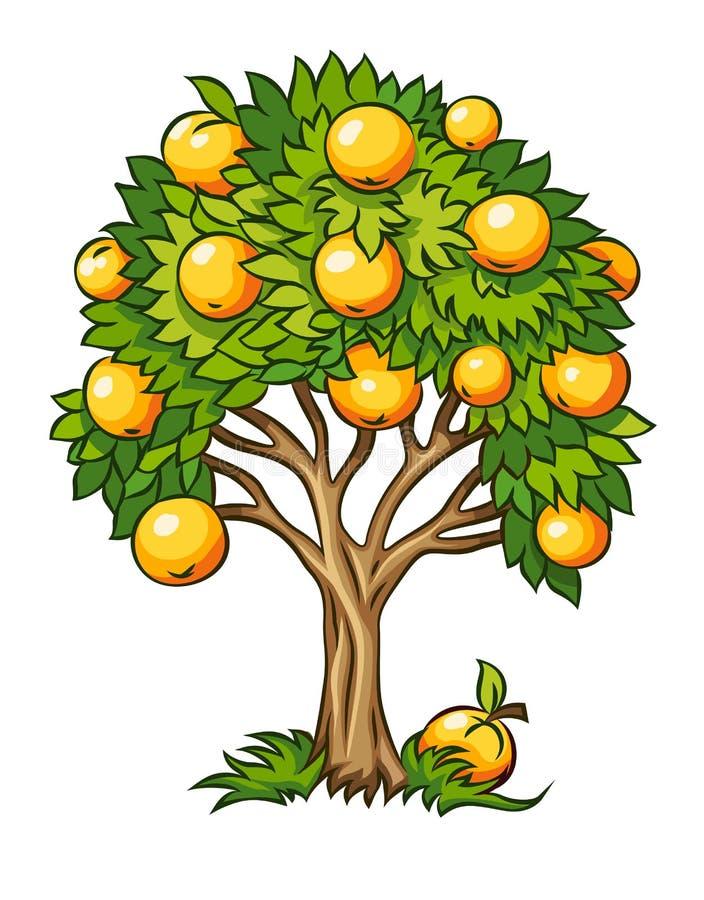Οπωρωφόρο δέντρο που απομονώνεται απεικόνιση αποθεμάτων
