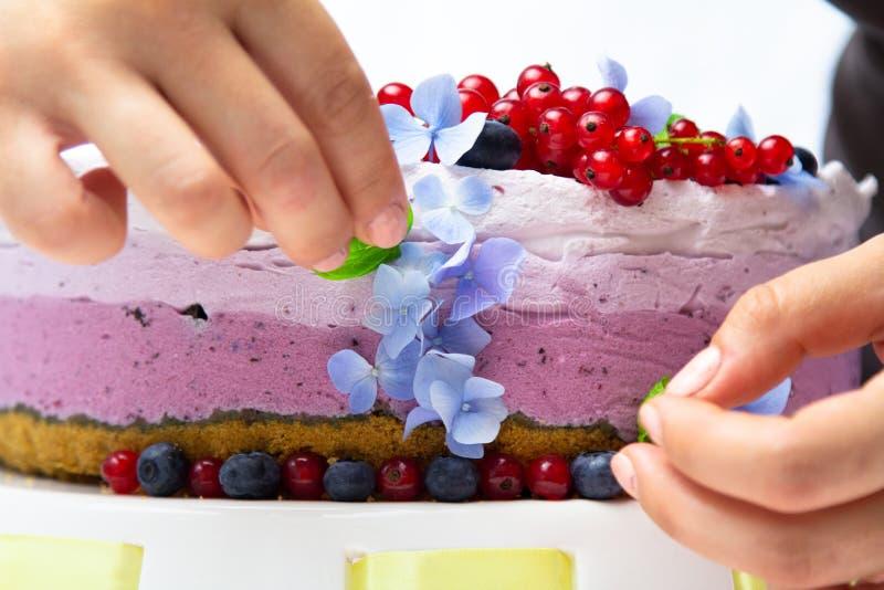 Ορίζοντας και μαγειρεύοντας τυριών κρέμας κέικ τροφίμων με τα βακκίνια στοκ εικόνες με δικαίωμα ελεύθερης χρήσης