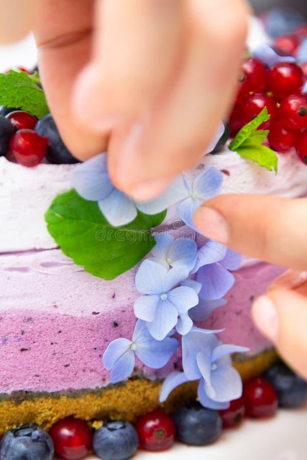 Ορίζοντας και μαγειρεύοντας τυριών κρέμας κέικ τροφίμων με τα βακκίνια στοκ φωτογραφίες